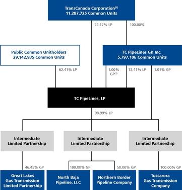 tc pharmaceuticals revenue