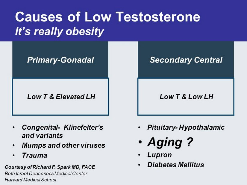 low testosterone hypothyroidism women