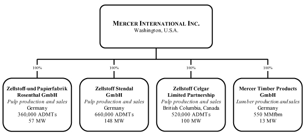 mercer timber saalburg